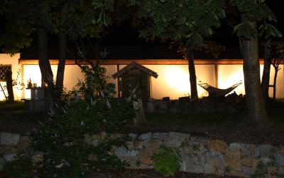 Der Garten bei Nacht